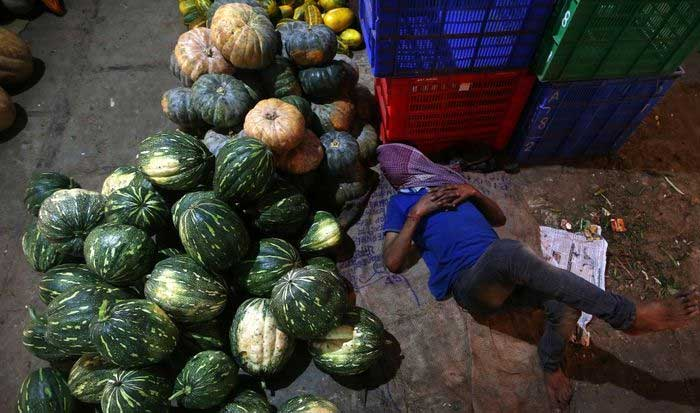 India's January inflation eases to 4.06% y/y