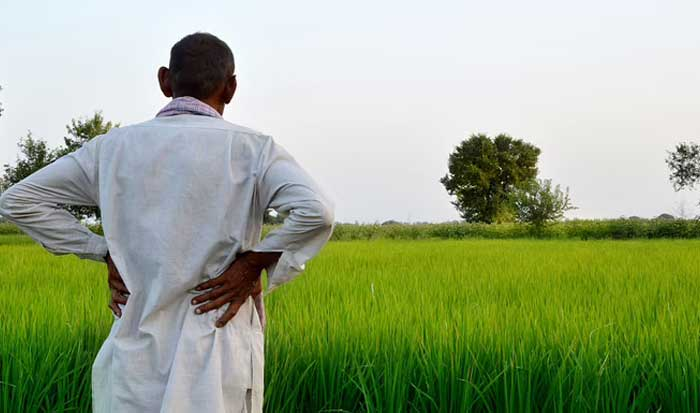 किसान और मध्यम वर्ग ने उठाया देश को मंदी से निकालने का बीड़ा